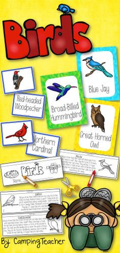 Birds posters, book to create, and cards for matching.