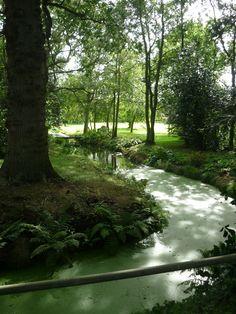 Ranworth, Norfolk- it's somebodies garden we walked past!!! Lucky folk