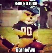 1000 Images About Bear Down I