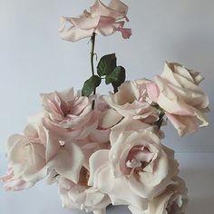 Flowers by @fjura_