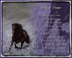 Horse Poems, Field Of Dreams, All The Colors, Mottos, Man Cave, Prize Wheel, Man Caves