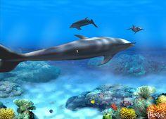 Ocean Live Wallpaper for Windows - WallpaperSafari