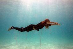 underwater photography by james cooper - designboom | architecture