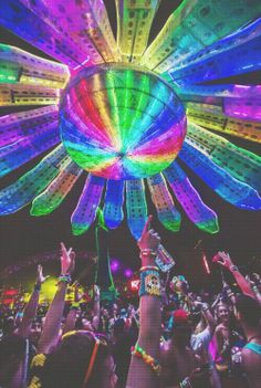 @Rachel Winslow Dog EDC