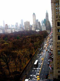 Central Park, New York #central_park #new_york