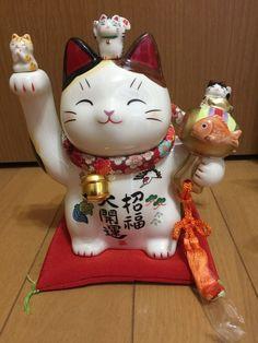 Japanese Porcelain Maneki Neko Lucky Cat Lots Of Better Luck Made In Japan 7596 White Kittens, Cats And Kittens, Ragdoll Kittens, Bengal Cats, Kitty Cats, Neko Cat, Anime Cat, Maneki Neko, Kittens Cutest