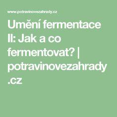 Umění fermentace II: Jak a co fermentovat? | potravinovezahrady.cz