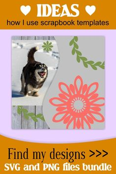 I love use these floral elements for decorating my scrapbook page layouts and picture collage layouts. #floral #elements #clipart #flower Scrapbook Frames, Scrapbook Templates, Scrapbook Designs, Scrapbook Page Layouts, My Scrapbook, Scrapbook Supplies, How To Make Wreaths, Floral Wreath, Floral Flowers