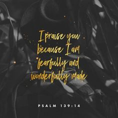 Psalms For thou hast possessed my reins: thou hast covered me in my mother's womb. I will praise thee; for I am fearfully and wonderfully made: marvellous are thy works; and that my soul knoweth right well. Psalm 139, Jesus Freak, Life Words, Verse Of The Day, Daily Devotional, Daily Bible, Daily Word, Good Good Father, Bible Quotes