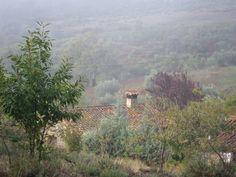 Mañana de nieblas otoñales en Jiniebro