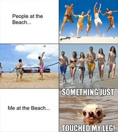 this is why i don't go to the beach - well, one of the many reasons lol