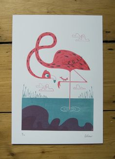 This Flamingo wants a friend, or perhaps just some dinner!
