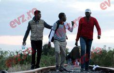 AU VENIT. Primii imigranți care nu au mai putut trece spre Germania de gardul ungurilor, au intrat în România