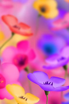 couleur multicolore - Page 🌸 🌹 ᘡℓvᘠ❤ﻸ Facebook Cover Photos Hd, Covers Facebook, Facebook Art, Free Facebook, Colorful Flowers, Beautiful Flowers, Rainbow Flowers, Colorful Plants, Tiny Flowers