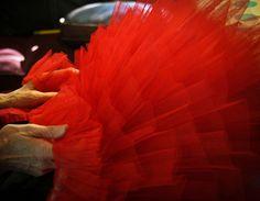 Red Tutu Ruffles by 3Geezy, via Flickr