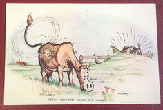 H.G.Kresse - Lassowerpen en touwdraaien + 5 Ansichtkaarten Padvinderij - sc - (1939/1945) - W.B.