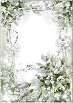 Beautiful White Soft Transparent Frame with Snowdrops