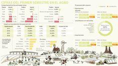 Exportaciones y clima empañaron los resultados del agro