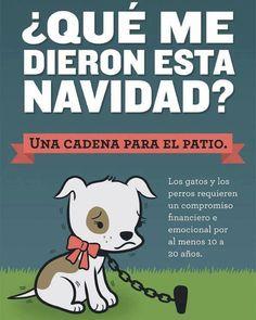 ¿Qué me dieron esta Navidad?  Una cadena para el patio.  Los gatos y los perros requieren un compromiso financiero y emocional por lo menos de 10 a 20 años.   #PetsWorldMagazine #RevistaDeMascotas #Panama #Mascotas #MascotasPanama #MascotasPty #PetsMagazine