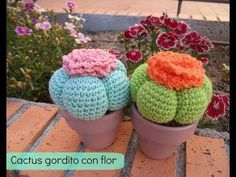 Gordito Cactus with Flor Amigurumi – Videotutorial in Spanish here: www.happyga … – From Parts Unknown Crochet Cactus, Crochet Fabric, Easter Crochet, Crochet Home, Crochet Dolls, Crochet Flowers, Amigurumi Patterns, Crochet Patterns, Cat Amigurumi