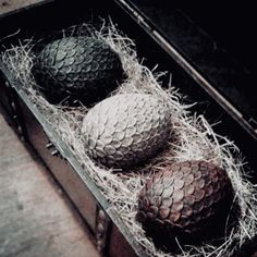 Game Of Thrones Dragon Eggs . Just because you're not the Mother of Dragons doesn't mean you can't get your hands on some Game Of Thrones. Casas Game Of Thrones, Arte Game Of Thrones, Game Of Thrones Party, Game Of Thrones Dragons, Got Dragons, Game Of Thrones Fans, Mother Of Dragons, Drogon Game Of Thrones, Hand Des Königs