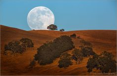 A supermoon rises over hillside in San Benito County on July California, USA. If a full moon is closer than kilometers at perigee, it is considered a Super Full Moon. Full Moon Rising, Moon Rise, Beaver Full Moon, Lake Wanaka, Big Moon, Super Moon, All Nature, Sunset Sky, Great Pictures