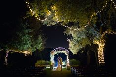 Kindred Oaks lit up at night // Shelley Elena Photography