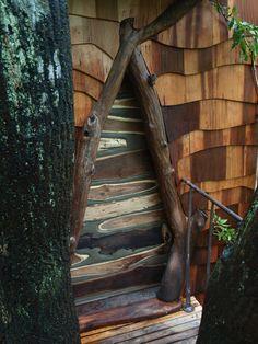 nasua-treehouse-takashi-kobayashi-6