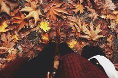 pumpkinpieleaves:   All year fall blog  - cold hands, warm hearts