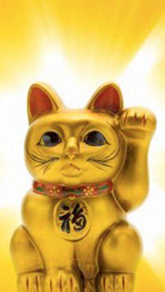 Japanese porcelain lucky cat (Maneki Neko) --- Image by © amanaimages/Corbis Maneki Neko, Cat Character, Character Design, Feng Shui, Real Vampires, Dearly Beloved, Shades Of Gold, Japan Photo, Touch Of Gold