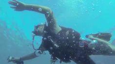 Diving Roatan - West Bay, Roatan, Honduras - TGI Diving