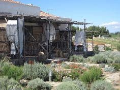 Residenza ACova - www.residenzaacova.com #Sardegna #Carloforte