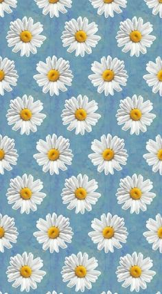 Daisy iPhone wallpaper discovered by 𝓈𝒶𝓂𝒶𝓃𝓉𝒽𝒶 𝓈𝑒𝓇𝑒𝓃𝒶 ✰ Daisy Wallpaper, Flower Phone Wallpaper, Phone Screen Wallpaper, Emoji Wallpaper, Wallpaper Iphone Disney, Cellphone Wallpaper, Cute Wallpaper Backgrounds, Pretty Wallpapers, Cool Wallpaper