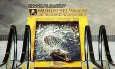 National Geographic 3D crocodile escalator advert that's TOO realistic-It's part of a campaign for 'Mundo Salvagem de Richard Rasmussen' - translating to: 'Ready for an adventure through the Brazilian forests? Wild world with Richard Rasmussen.'
