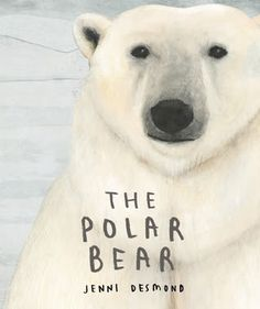 For species which make their home here and rely on the climate not to change to survive, this is a frightening fact.  The largest living land carnivore is in a precarious position.  The Polar Bear (Enchanted Lion Books, November 15, 2016) written and illustrated by Jenni Desmond (The Blue Whale) serves to enlighten readers about this majestic creature.