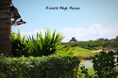 Photography, Outdoor Photography, Riviera Maya Mexico, Mayan Palace, Grand Mayan,