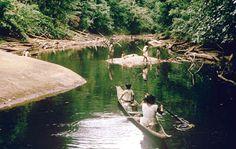 Guyana:diga minaccia un intero popolo e aree di foresta pluviale
