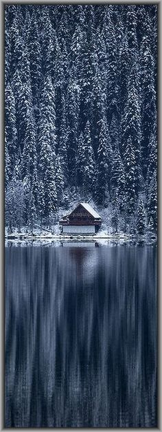 CANADA - CABIN - British Columbia - Cariboo Mountains - Bowron Lake #by robert downie on http://flickr.com #winter snow forest landscape amazing reflection tree blue white