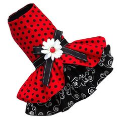 Ladybug lady bug Dot Dog Dress small dog by ChloeBellaDesigns