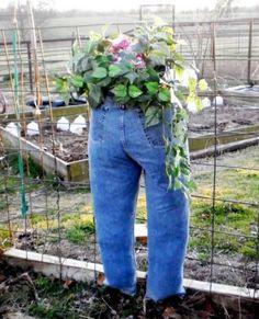 Denim Jeans Planters Watch The Video Tutorial