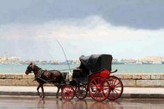 Alexandria, #Egypt.....AArabeya Hantour