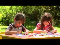 Zrób to z Borówką - Leśne składanki - Piętra Lasu - YouTube
