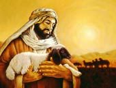 Animals, A Gift From God
