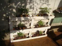 horta-suspensa-plantas-caseiras41