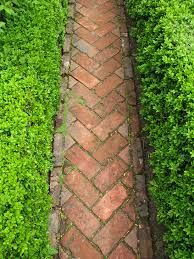 sissinghurst path - Google Search