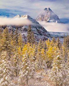 Mt Assiniboine (BC/Alberta border) by Leah A Horstman (@lahorstman_photo) on Instagram