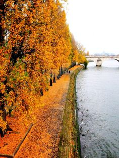 Poshvoice P-inspiration! Nothing like fall in Paris. Seine in Paris France Paris 3, I Love Paris, Paris In Autumn, Oh The Places You'll Go, Places To Travel, Places To Visit, Tour Eiffel, Beautiful Places, Scenery