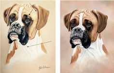 How to improve a boxer dog painting: http://www.colinbradleyart.co.uk/home/how-to-improve-a-boxer-dog-painting/
