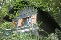 Cabin from the path leading to it