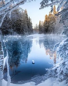 Rosamaria g frangini season winter winterblues winter lights. Winter Pictures, Nature Pictures, Beautiful Pictures, Winter Magic, Winter Scenery, Winter Colors, Winter Beauty, Winter Makeup, Winter Landscape